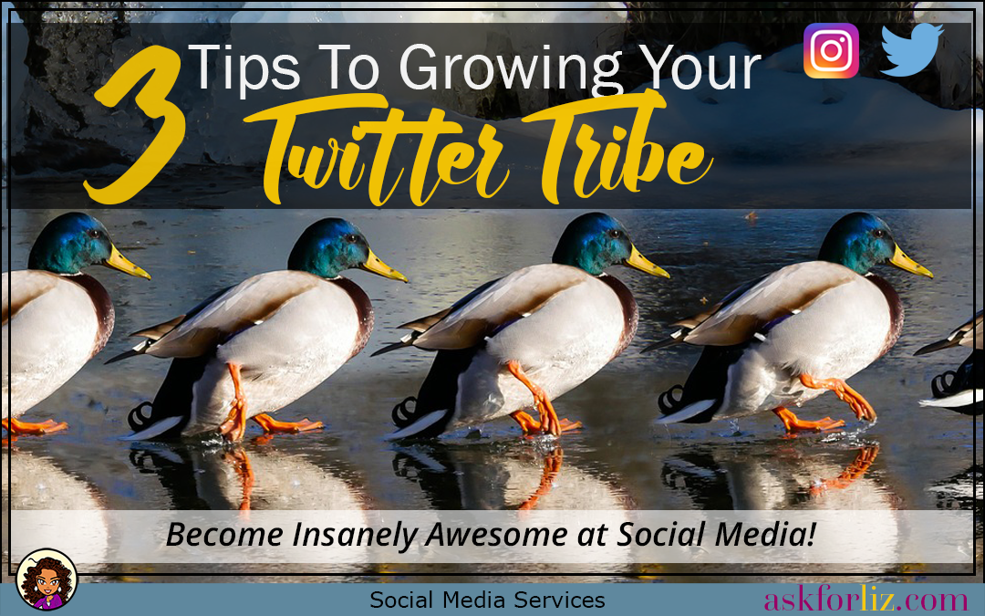 3 Easy Tips To Growing Your Twitter Tribe